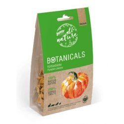 »all nature« BOTANICALS Pumpkin pieces 80g